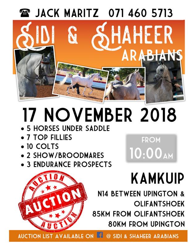 Sidi and Shaheer Action 2018